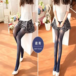 40D Velvet Women Tight Legging